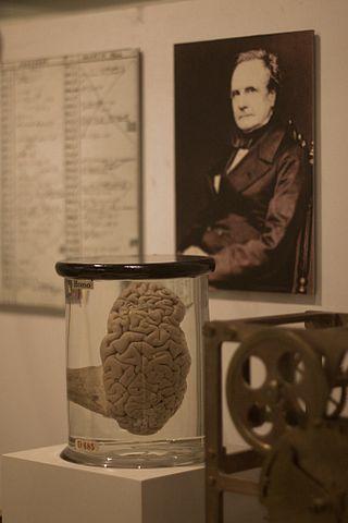 Babbages_Brain