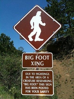 bigfoot2