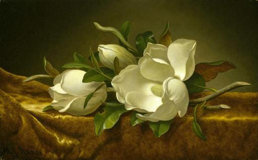 magnolias-on-gold-velvet-cloth-1890.jpg!Large